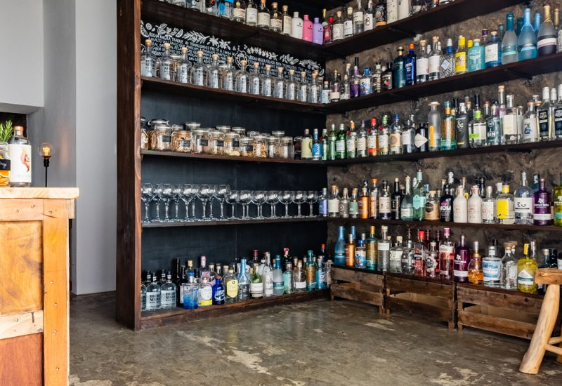 gin-library